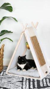 DIY 1 - Tenda para gato