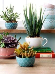 DIY 9 -Vasos feitos de louça