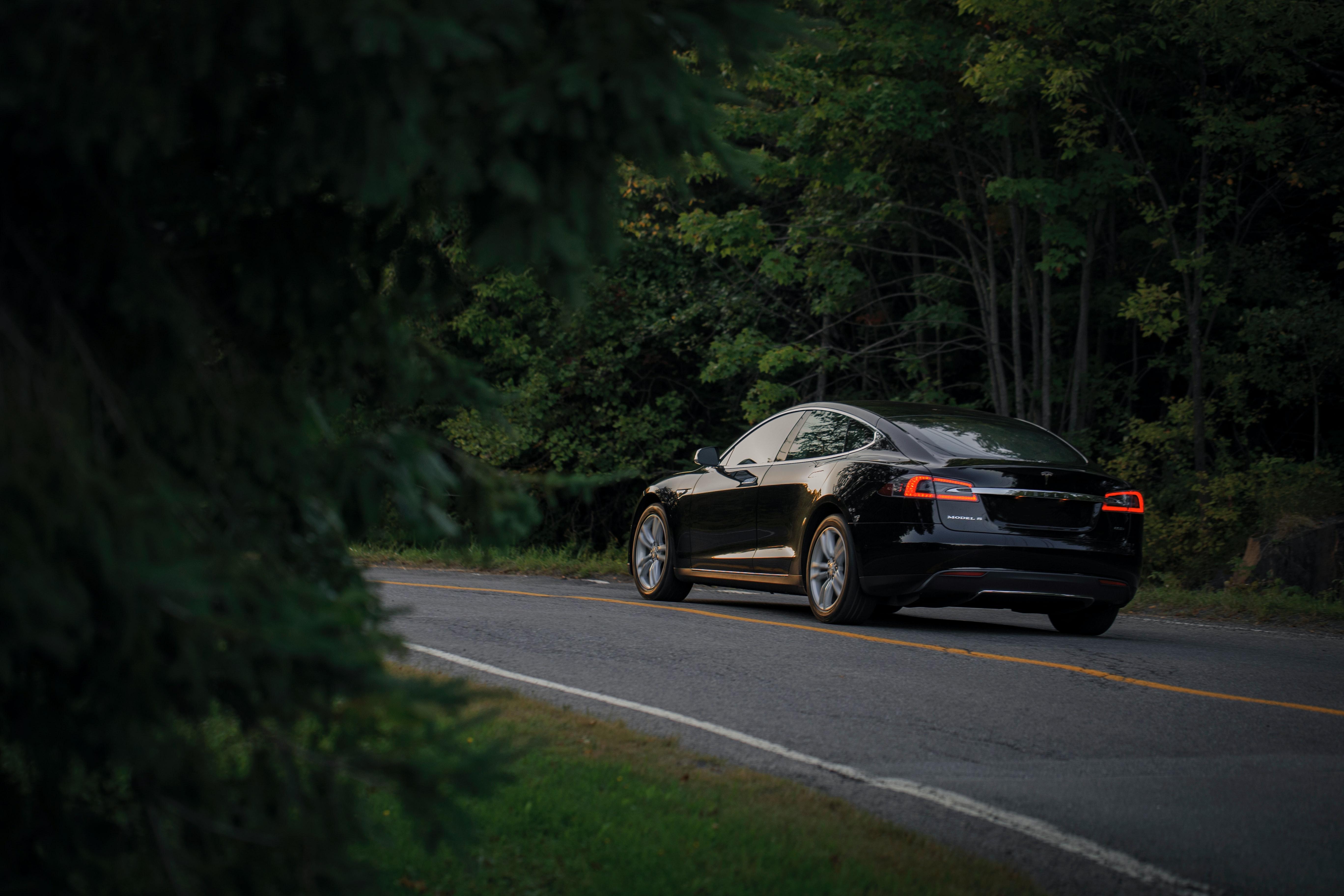 carro eletrico na estrada entre arvores